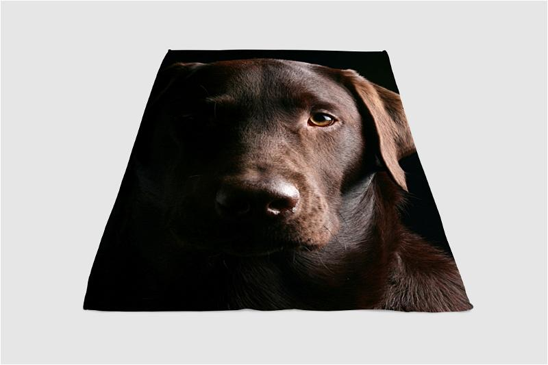 Brown Eyes Of Dog Fleece Blanket