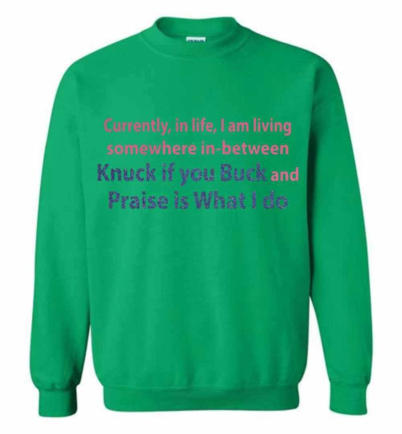 Currently In Life I Am Living Somewhere In Between Knuck If Sweatshirt Inktee Store